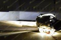 Светодиодные лампы головного света и противотуманных фар Morimoto