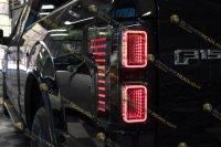 Светодиодные задние фонари Ford F150 15-17